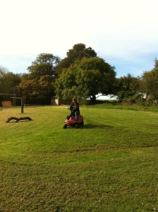 Mowing a Meadow