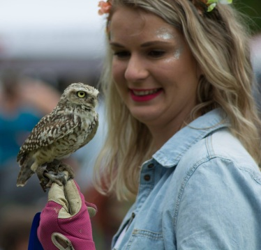 Close up with Peanut the burrowing owl