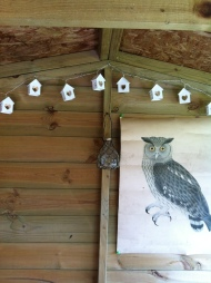 Love my Owl Shed
