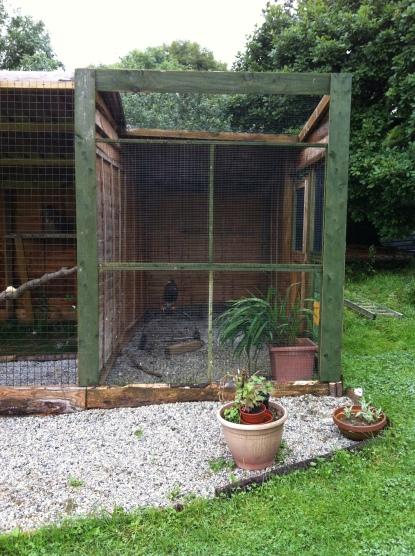 aviary shaping up