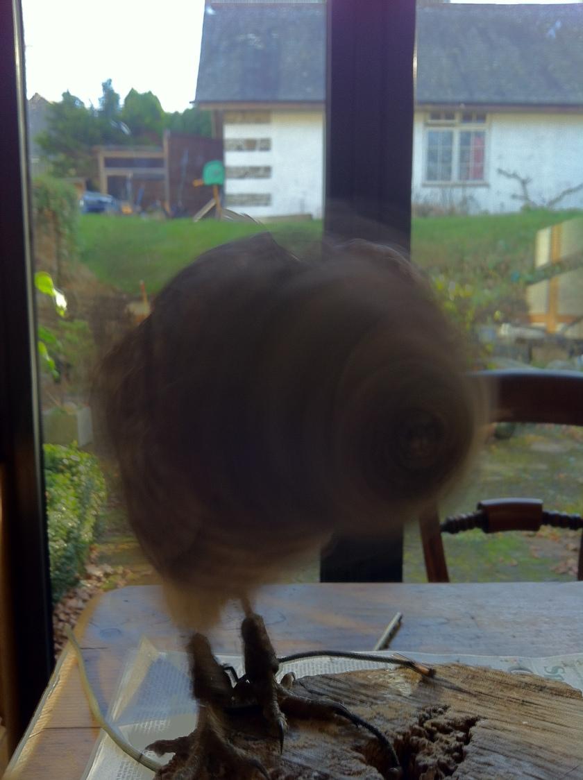 peanut-whirl