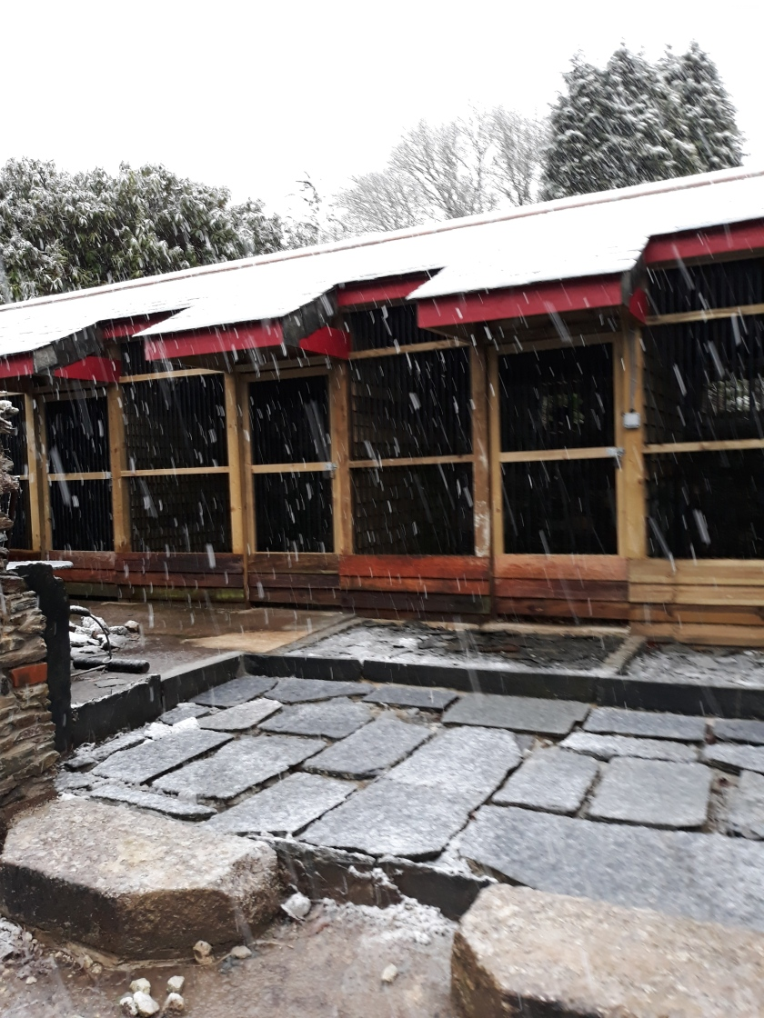 Aviaries ready for winter